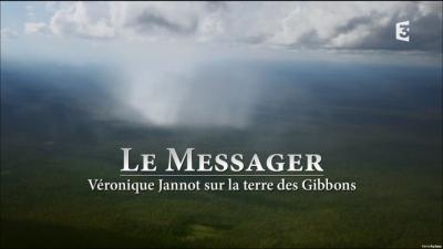 Le Messager – Véronique Jannot sur la terre des gibbons
